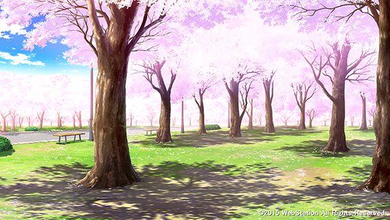 桜の公園背景