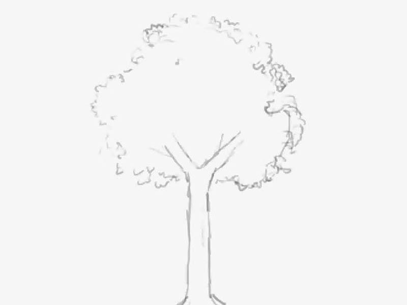 動画背景講座用の木0