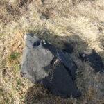 テクスチャ_岩と草