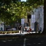 NZ Auckland 02