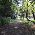 林の道と東屋